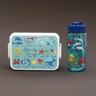 Lot boîte à goûter / déjeuner et gourde sans BPA Océan