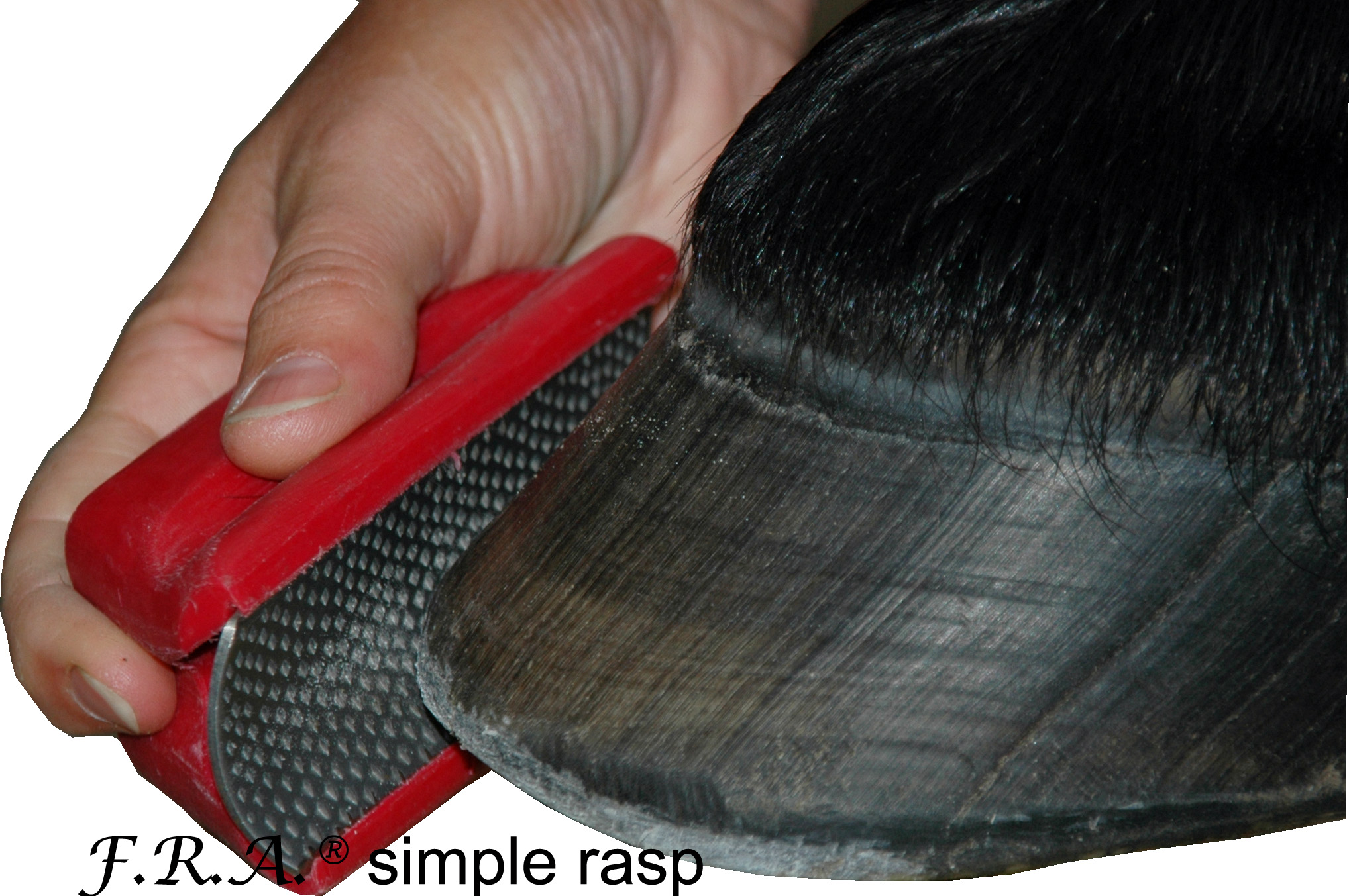 F.R.A. rasp rood how to use