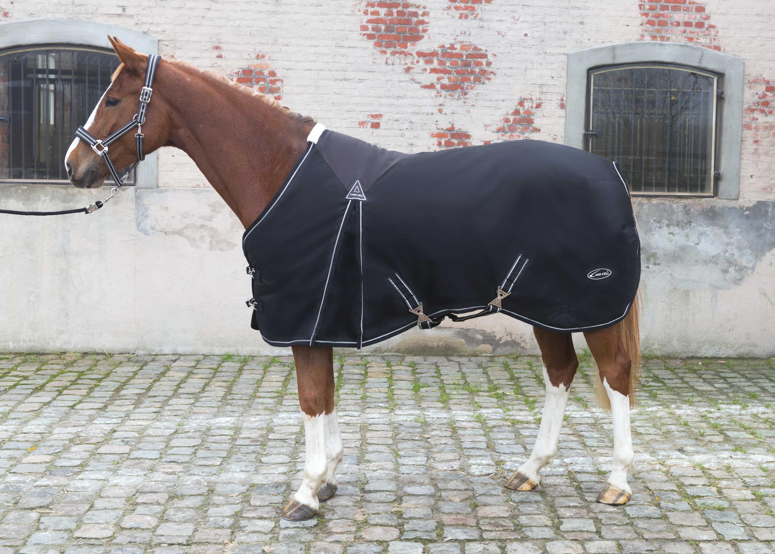 Q.H.P Waldhausen En Coton Doux Laine Cheval Equine Confort Training Aid longes Corde