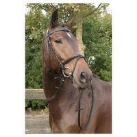 Bridon Bronze Harrys'Horse