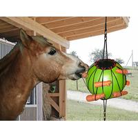 Ballon pour chevaux