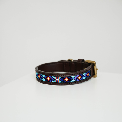 collier-pour-chien-perles-kentucky-bleu2