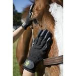 gant de pansage caoutchouc cheval chien shampoing