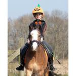 accessoires-halloween-citrouilles-têtiere-cheval-deguisement (2)