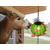 balle-ballon-pour-chevaux-au-box-avec-cordes-pour-fixer-carottes