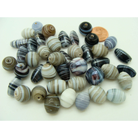 Mix Perles verre lampwork tons blancs gris noirs par 75 grammes