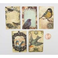 Etiquettes carton 60x40mm mix 5 motifs oiseaux par 20 pcs