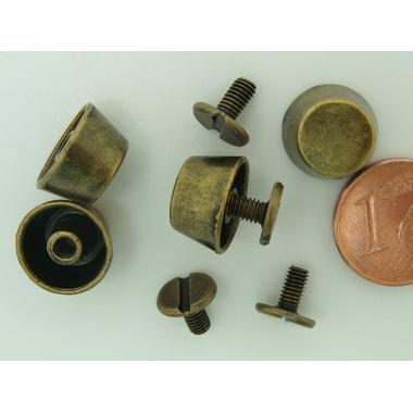 pied-a-visser-bronze