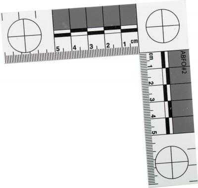 Regle de mesure pour photographier les indices
