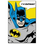 photo-logo-batman