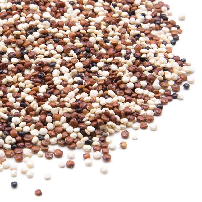 """Résultat de recherche d'images pour """"image quinoa"""""""
