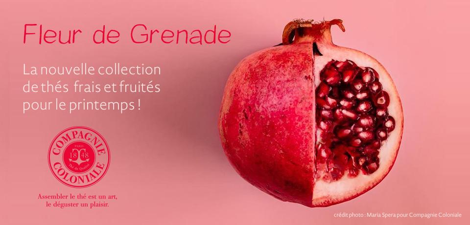 Le contraste entre fruit du nord et fruit du sud s'exprime dans un mélange de thés verts avec la cranberry et la grenade.