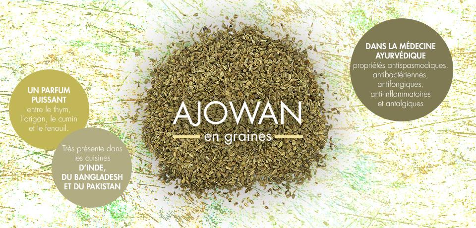Une des épices essentielles de la cuisine indienne, aux propriétés antispasmodiques et antibactériennes, qui vient en complément ou remplace le cumin ou le carvi.