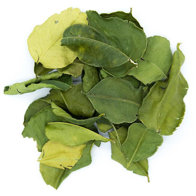 Feuilles de citron Kaffir (Combava)
