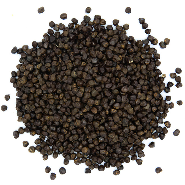 Kororima en graines
