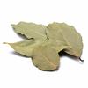 feuilles-de-laurier-detail