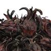 fleurs-d-hibiscus-entieres-sechees-bio-detail