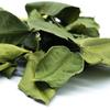 feuilles-de-citron-kaffir-detail