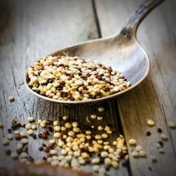 mesepices-format-condiments-graines