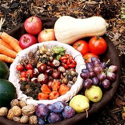 panier-amap-legumes-octobre-automne-mesepices