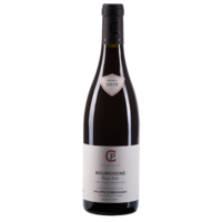 Bourgogne Pinot Noir Rouge - 2016 - Domaine Philippe Cordonnier