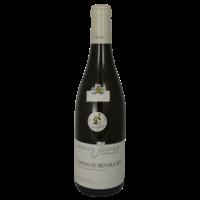 Chassagne-Montrachet Blanc - 2016 - Domaine Gabriel et Paul Jouard