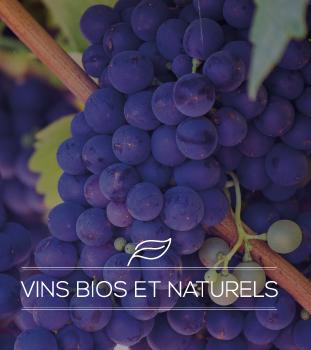 Vins-bios-et-naturels
