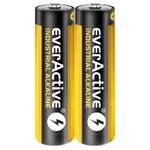 2 piles alcalines LR6 Industrial / AA everActive