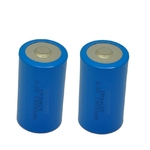 Eunicell - Lot de 2 piles ER34615 LS33600 3,6 volt 19000mah