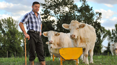Devenir agriculteur: la formation pour tester le métier agriculteur.