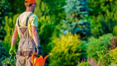 Devenir paysagiste: la formation pour tester le métier paysagiste.
