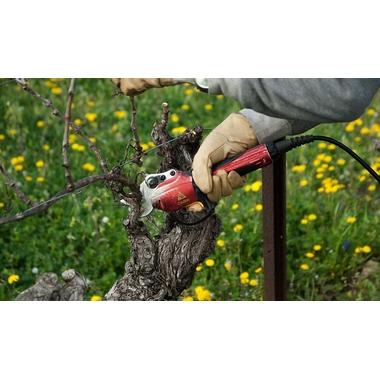 viticulteur 1