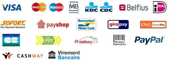 paiement-site