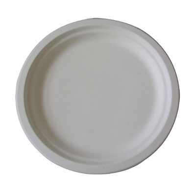 Assiettes biodégradables 245mm par 125