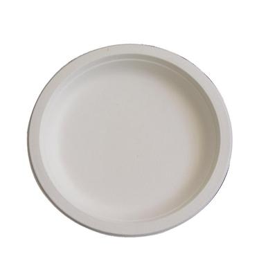 Assiette biodégradable. 171mm par 125