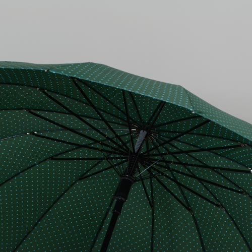 parapluieetoilevert1