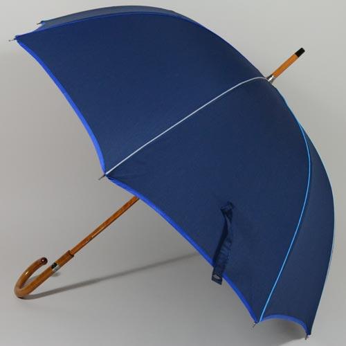 parapluieeternelbleu2