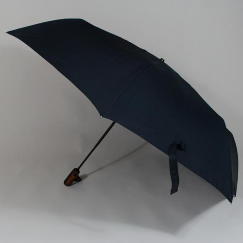 parapluieboston2