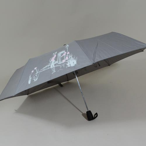 parapluieminicroquismagik1