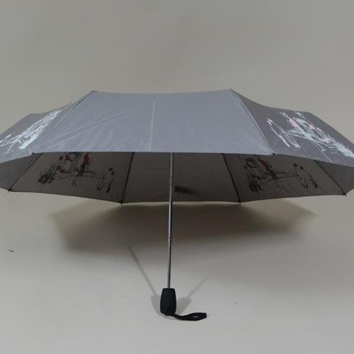 parapluieminicroquismagik3