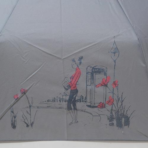 parapluieminicroquismagik5
