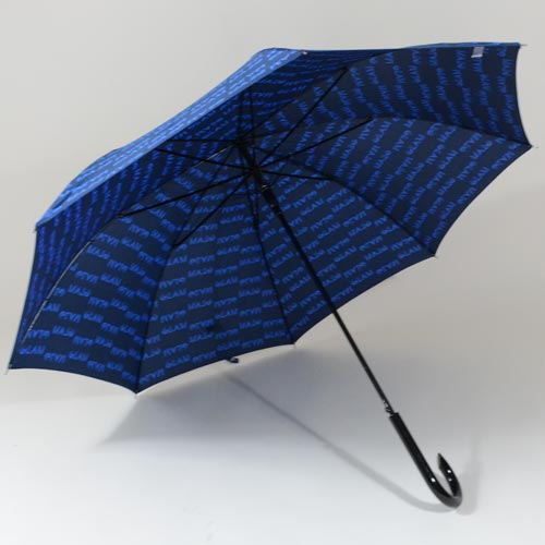 parapluieglambleu3