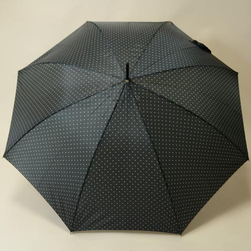 parapluiepetitpois3