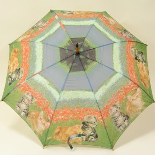 parapluiechat1