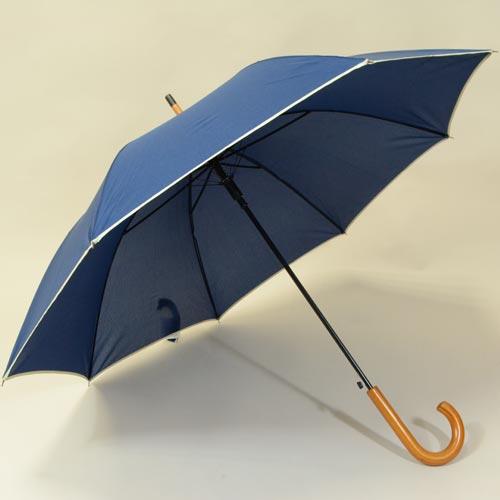 parapluiebluewood1