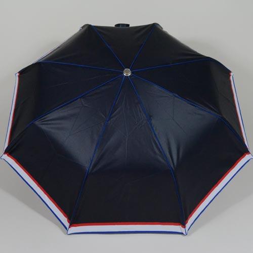 parapluieminifrenchie3