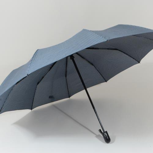 parapluieminigentleman2