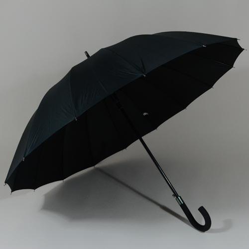 parapluienumero162