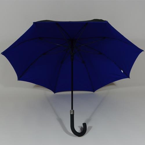 parapluiedoublebleumar2
