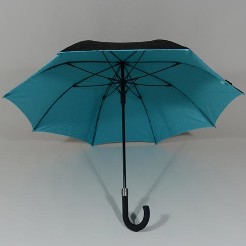 parapluiedoublebleu1